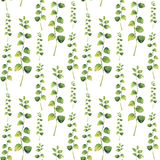 Watercolor green floral seamless pattern with twig herbs. Royalty Free Stock Photography