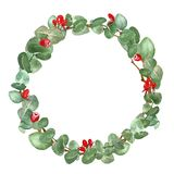 Watercolor green floral wreath with eucalyptus leaves and branches. Christmas decorative border on white background. Watercolor eucalyptus christmas wreath with stock photo