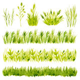 Watercolor green grass set on white background.  Stock Images