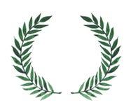Watercolor green laurels. Royalty Free Stock Images
