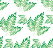 Watercolor green leaf. Background illustration Royalty Free Stock Image