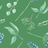 Watercolor Green Leaves Blue Berries Winter Seamless Pattern Repeat Stock Photography