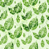 Watercolor green leaves seamless pattern background Stock Images