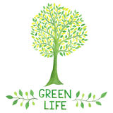Watercolor green logo with green tree. Green life. Stock Photo