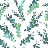 Watercolor green seamless vector pattern with eucalyptus selection Royalty Free Stock Photography