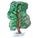 Watercolor green tree cartoon illustration Royalty Free Stock Image