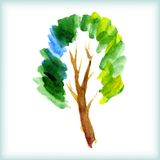 Watercolor green tree Stock Photography