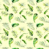 Watercolor green tropical exotic leaves and fern branches seamless pattern Royalty Free Stock Images