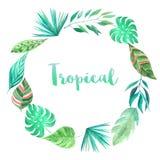 Watercolor green tropical frame Royalty Free Stock Photos