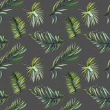 Watercolor green tropical palm leaves and fern branches seamless pattern Royalty Free Stock Photos
