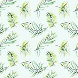 Watercolor green tropical palm leaves and fern branches seamless pattern Royalty Free Stock Photography