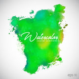 Watercolor Green Vector Element For Text Background. Art Stock Images