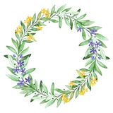 Watercolor green wreath. Royalty Free Stock Images