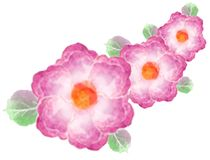 Watercolor greeting card flowers. Handmade. Stock Photography