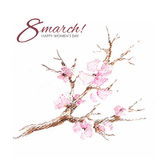Watercolor greeting card 8 March with flowering branch Stock Photography