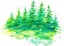 Watercolor group of fir trees green forest landscape. Abstract vector watercolor forest landscape, reflection of green trees in water at sunrise, hand drawn Stock Photo