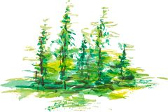 Watercolor group of fir trees green forest landscape. Drawing on white isolated background. Eps 10 vector illustration for your design Royalty Free Stock Image