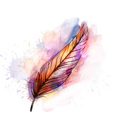 Watercolor grunge feather Royalty Free Stock Images