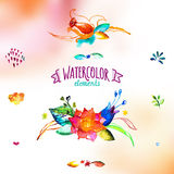 Watercolor hand drawing floral decor set Royalty Free Stock Photos