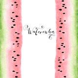 Watercolor hand-drawn beautiful sweet watermelon. Stock Image