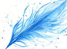 Watercolor hand drawn blue feather Stock Photos