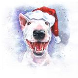 Watercolor hand-drawn bright-colored bullterrier Christmas holiday card Stock Images