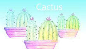 Watercolour cactus with name Royalty Free Stock Photography