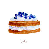 Watercolor hand drawn cake.  dessert illustration on white background Stock Image