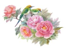 Watercolor hand drawn colorful beautiful flowers and birds. Royalty Free Stock Photography