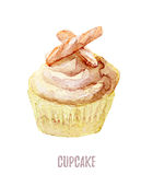 Watercolor hand drawn cupcake perfect for invitations, cards, dinners and menu templates. Stock Image