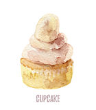 Watercolor hand drawn cupcake perfect for invitations, cards, dinners and menu templates. Stock Photo