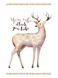 Watercolor hand drawn deer.ethnic print in native western Americ. An style. drawing watercolour. Tribal Navajo isolated illustration ornament on white,mystical Stock Photo