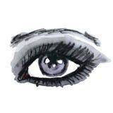 Watercolor hand drawn eye. Make up. Stock Image