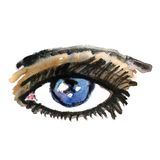 Watercolor hand drawn eye. Make up. Stock Image