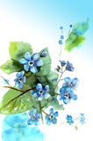Watercolor hand drawn forget-me-not on blue background. Floral b. Irthday card stock illustration