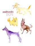 Watercolor hand drawn illustration of cute dogs. Good for children book illustration or print design stock illustration