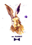 Watercolor hand drawn illustration of cute hare. Stock Image