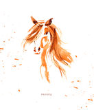 Watercolor hand drawn illustration of cute horse. Stock Photography