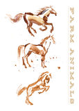 Watercolor hand drawn illustration of cute horse. Royalty Free Stock Images