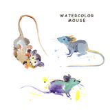 Watercolor hand drawn illustration of cute mice. Royalty Free Stock Photo