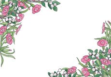 Watercolor hand drawn illustration of floral frame. royalty free illustration