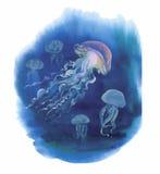 Watercolor Hand drawn jellyfish at Sea.  Stock Photos