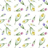 Watercolor pattern of tulips stock illustration