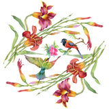 Watercolor hand drawn pattern with summer flowers and exotic birds. Stock Images