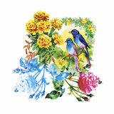 Watercolor hand drawn pattern with tropical summer flowers of and exotic birds Royalty Free Stock Photo