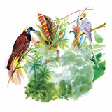 Watercolor hand drawn pattern with tropical summer flowers of and exotic birds Stock Photos