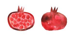 Watercolor hand-drawn pomegranate stock illustration