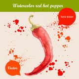 Watercolor hand drawn red hot chilli pepper. Vector watercolor hand drawn red hot chilli pepper with watercolor drops. Organic food illustration royalty free illustration