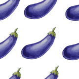 Watercolor hand drawn seamless pattern with eggplants. Stock Images