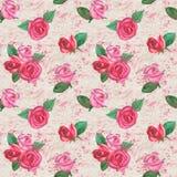 Grunge roses background royalty free illustration